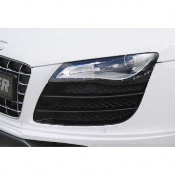 Frontschorzeneinsatz V10 (Gitter) links Audi R8 (42)