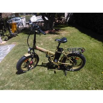 Bicicleta Eléctrica Fat Bike 500W.